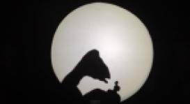 Screen Shot 2015-02-23 at 8.15.14 PM